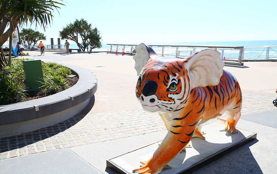 tiger-koala | The Regent Apartments - Gold Coast Holiday Accommodation Resort